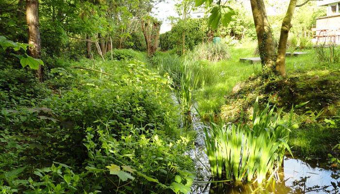 Een tuin anders dan anders alert eco for Wadi in tuin